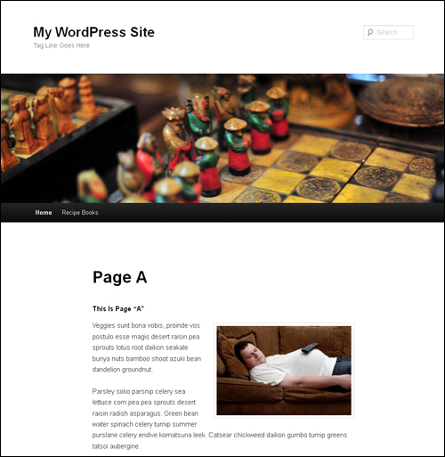 How To Make A WordPress Page Your Main Page