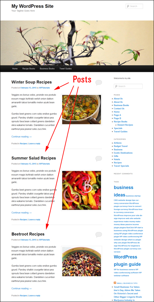 How To Create A Blog Page To Display Your Latest Post Entries In WordPress