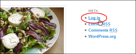 How To Log Into Your WP Blog - How To Use WordPress