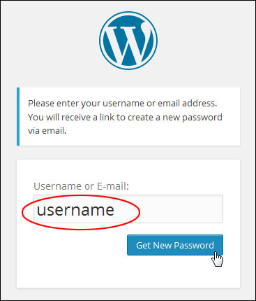 What To Do If You Lose WordPress Passwords