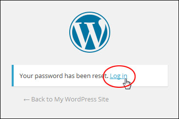 What To Do If You Forget Or Lose The Login Password